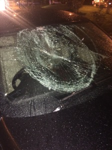 Windscreen pic RTC 2568