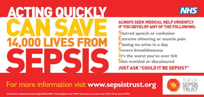 Sepsis - Vehicle Graphics 2